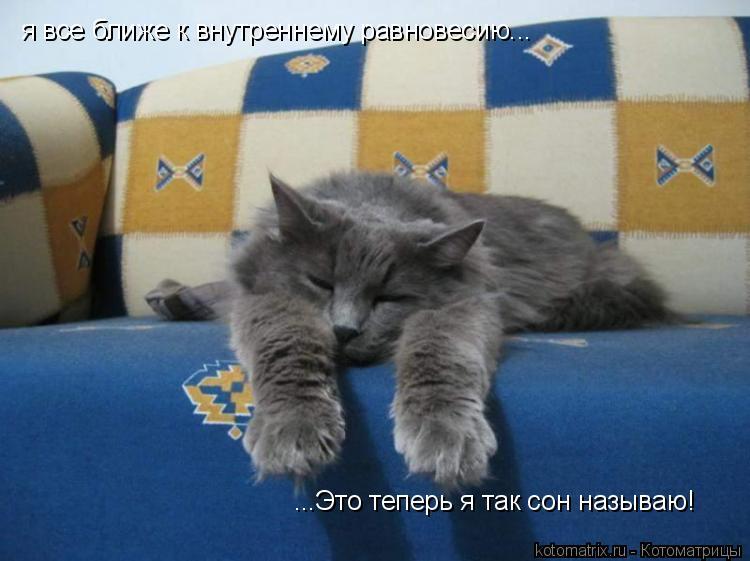 Котоматрица: я все ближе к внутреннему равновесию... ...Это теперь я так сон называю!