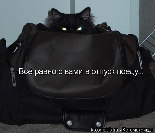 Котоматрица: -Всё равно с вами в отпуск поеду...