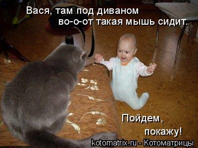 Котоматрица: во-о-от такая мышь сидит. Вася, там под диваном Пойдем,  покажу!