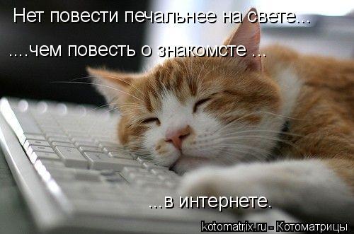 Котоматрица: Нет повести печальнее на свете... ....чем повесть о знакомсте ... ...в интернете.