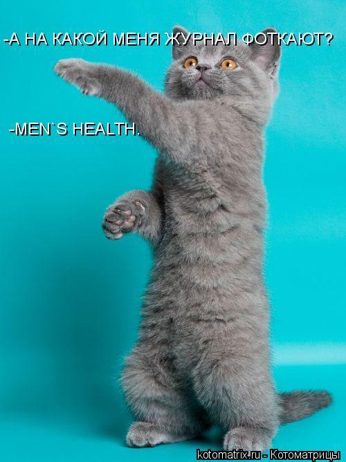 Котоматрица: -А НА КАКОЙ МЕНЯ ЖУРНАЛ ФОТКАЮТ? -MEN`S HEALTH.