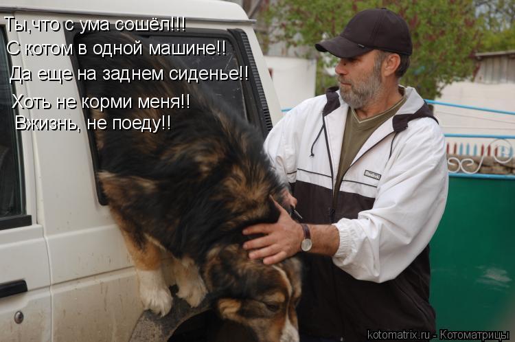 Котоматрица: Ты,что с ума сошёл!!! С котом в одной машине!! Да еще на заднем сиденье!! Хоть не корми меня!! Вжизнь, не поеду!!