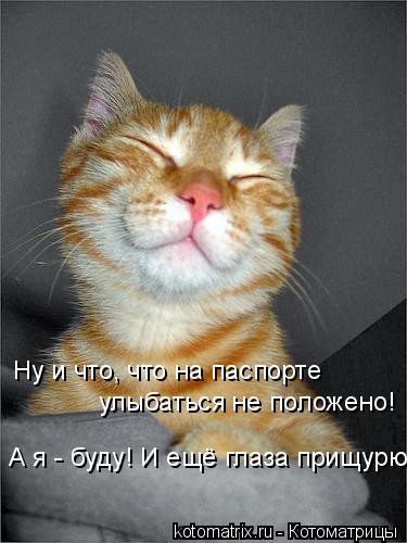 Котоматрица: Ну и что, что на паспорте  улыбаться не положено! А я - буду! И ещё глаза прищурю!