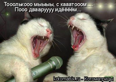 Котоматрица: Тооолькооо мыыыы, с кааатооом.... Пооо двааруууу идёёёём...