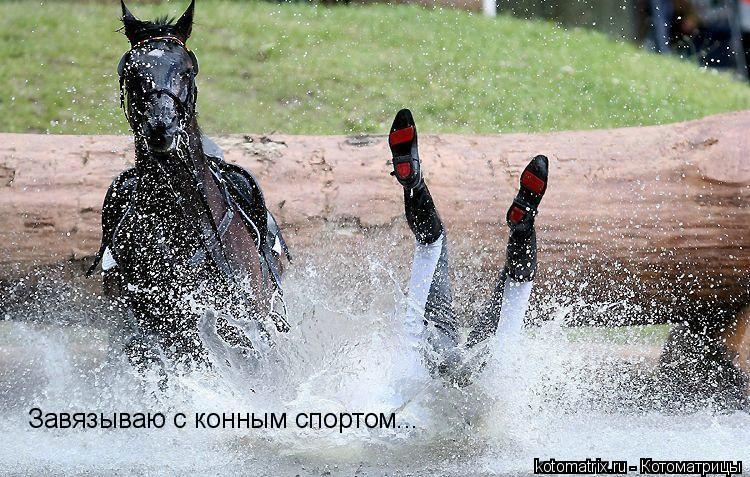 Котоматрица: Завязываю с конным спортом...