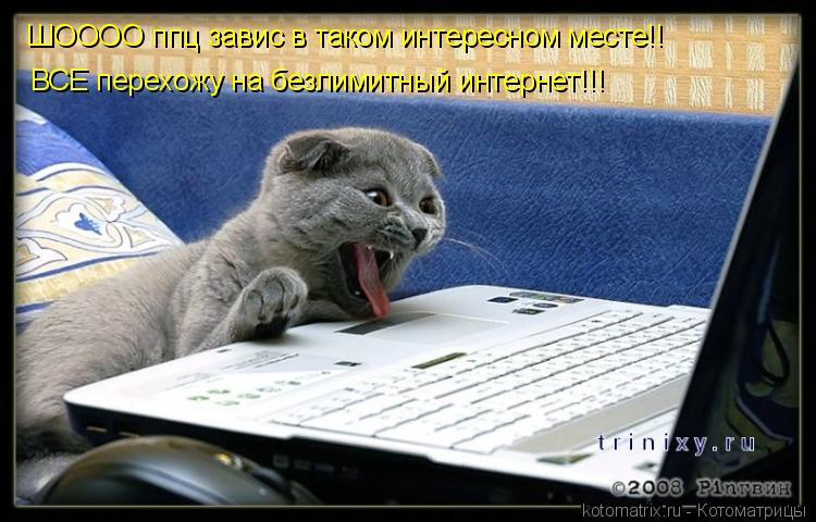 Котоматрица: ШОООО ппц завис в таком интересном месте!! ВСЕ перехожу на безлимитный интернет!!!