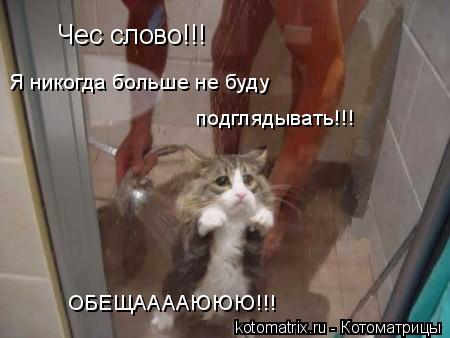Котоматрица: Чес слово!!! Я никогда больше не буду  подглядывать!!!  ОБЕЩААААЮЮЮ!!!
