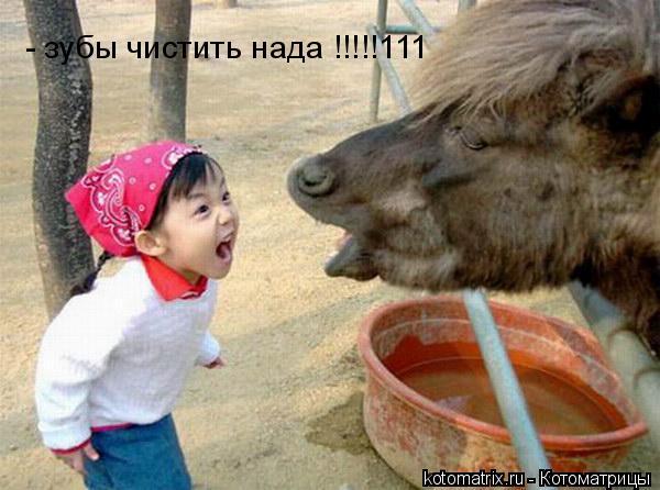 Котоматрица: - зубы чистить нада !!!!!111