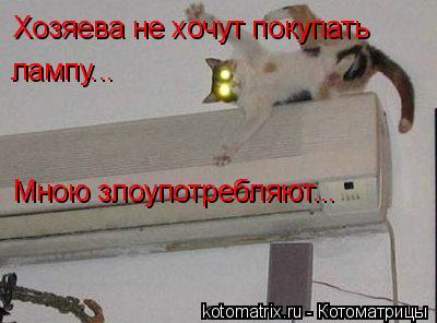 Котоматрица: Хозяева не хочут покупать лампу... Мною злоупотребляют...