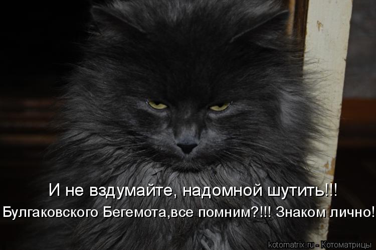 Котоматрица: Булгаковского Бегемота,все помним?!!! Знаком лично! И не вздумайте, надомной шутить!!!
