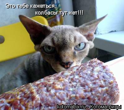 Котоматрица: Это тебе кажеться, колбасы тут нет!!!