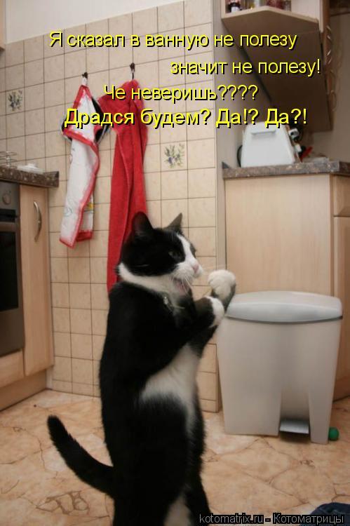 Котоматрица: Я сказал в ванную не полезу  значит не полезу! Че неверишь???? Драдся будем? Да!? Да?!