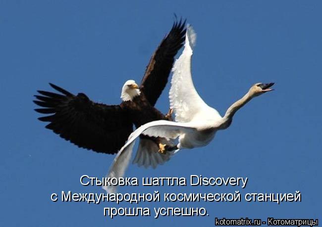 Котоматрица: Стыковка шаттла Discovery  с Международной космической станцией прошла успешно.