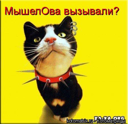 Котоматрица: МышелОва вызывали?