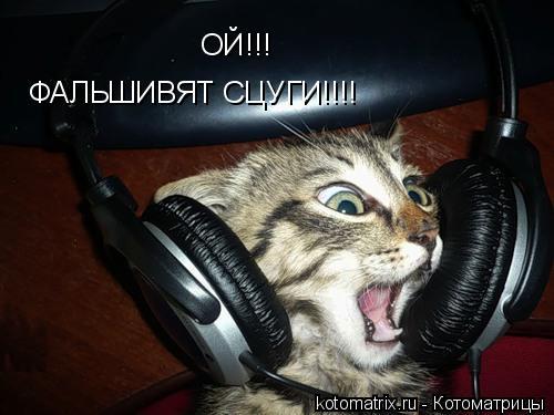 Котоматрица: ОЙ!!!  ФАЛЬШИВЯТ СЦУГИ!!!!