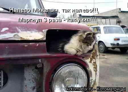 Котоматрица: Налево Михалыч, так налево!!! Маргнул 3 раза - как учил!!!