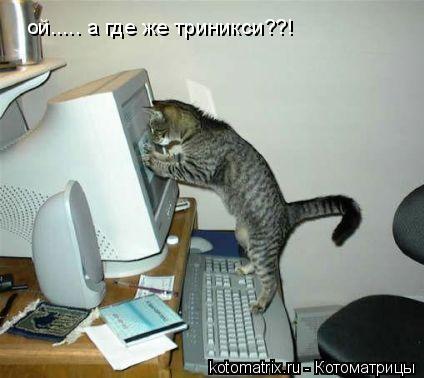 Котоматрица: ой..... а где же триникси??!