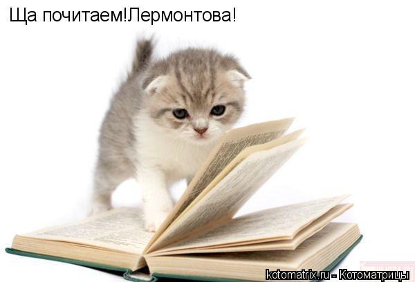 Котоматрица: Ща почитаем!Лермонтова!