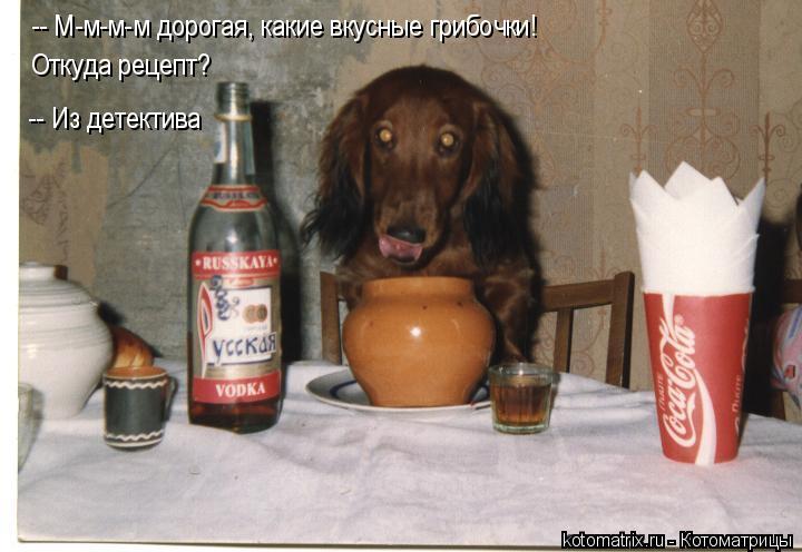 Котоматрица: -- М-м-м-м дорогая, какие вкусные грибочки! Откуда рецепт? -- Из детектива