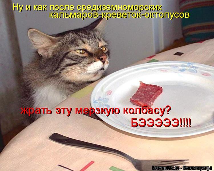 Котоматрица: Ну и как после средиземноморских  кальмаров-креветок-октопусов жрать эту мерзкую колбасу? БЭЭЭЭЭ!!!!