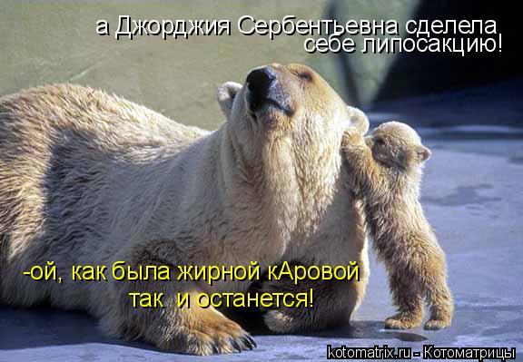 Котоматрица: а Джорджия Сербентьевна сделела  себе липосакцию! -ой, как была жирной кАровой  так  и останется!