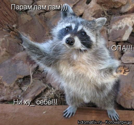 Котоматрица: Парам пам пам)))   ОПА!!! Ни ху_ себе!!!