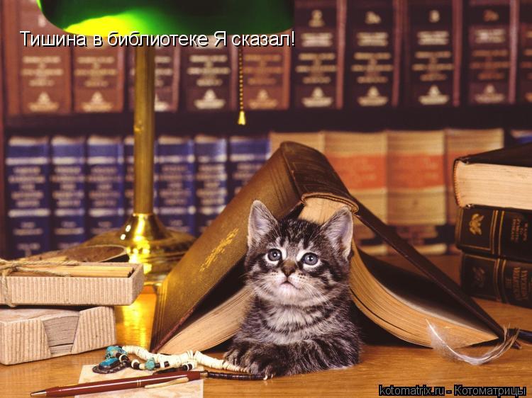 Котоматрица: Тишина в библиотеке Я сказал!
