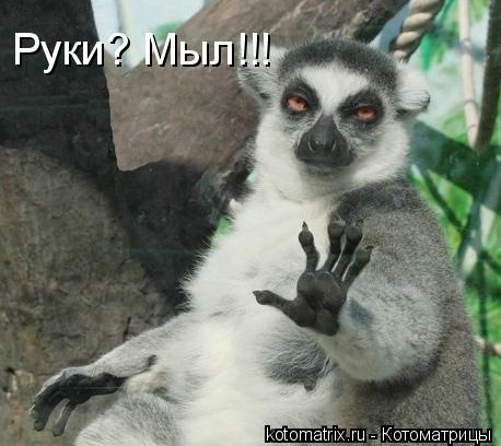 Котоматрица: Руки? Мыл!!!