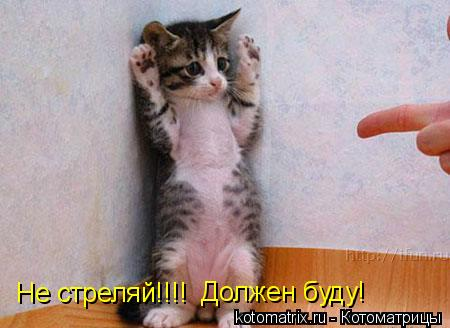 Котоматрица: Не стреляй!!!! Должен буду!