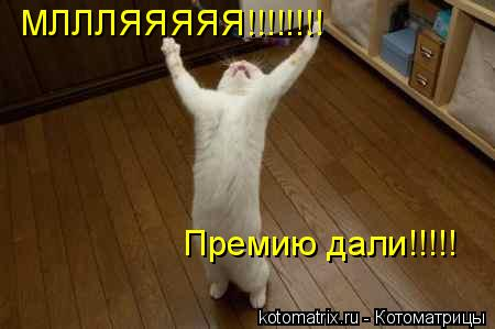 Котоматрица: МЛЛЛЯЯЯЯЯ!!!!!!!! Премию дали!!!!!