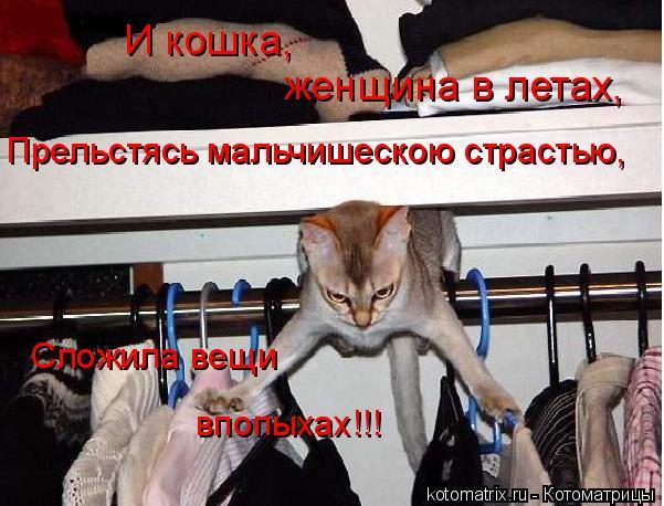 Котоматрица: И кошка, женщина в летах, Прельстясь мальчишескою страстью, Сложила вещи впопыхах!!!