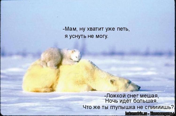 Котоматрица: -Ложкой снег мешая,  Ночь идёт большая. Что же ты глупышка не спиииишь?... -Мам, ну хватит уже петь, я уснуть не могу.