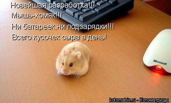 Котоматрица: Новейшая разработка!!! Мышь-хомяк!!! Ни батареек,ни подзарядки!!! Всего кусочек сыра в день!