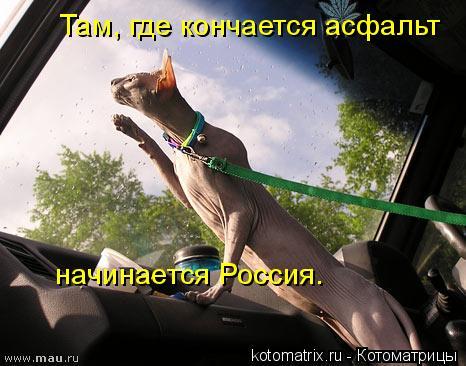 Котоматрица: Там, где кончается асфальт  начинается Россия.
