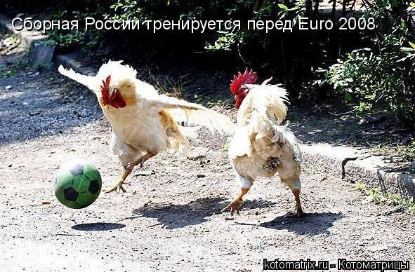Котоматрица: Сборная России тренируется перед Euro 2008