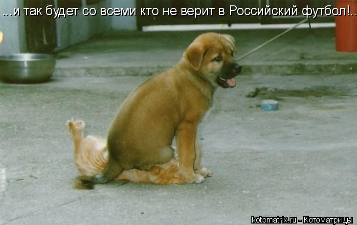 Котоматрица: ...и так будет со всеми кто не верит в Российский футбол!...