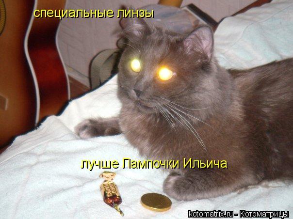 Котоматрица: специальные линзы лучше Лампочки Ильича