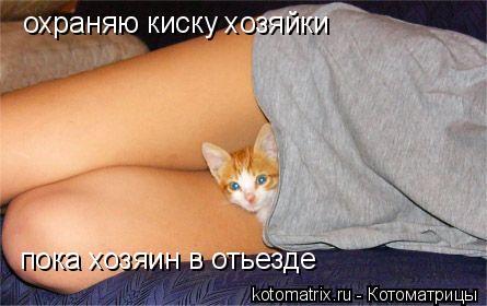 Котоматрица: охраняю киску хозяйки пока хозяин в отьезде