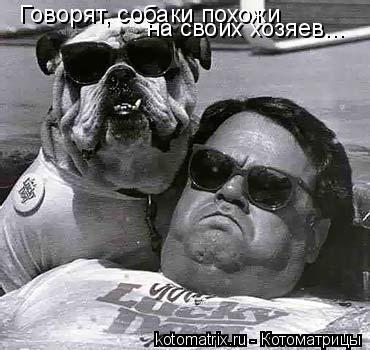 Котоматрица: Говорят, собаки похожи  на своих хозяев...