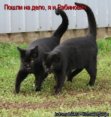 Котоматрица: Пошли на дело, я и Рабинович...