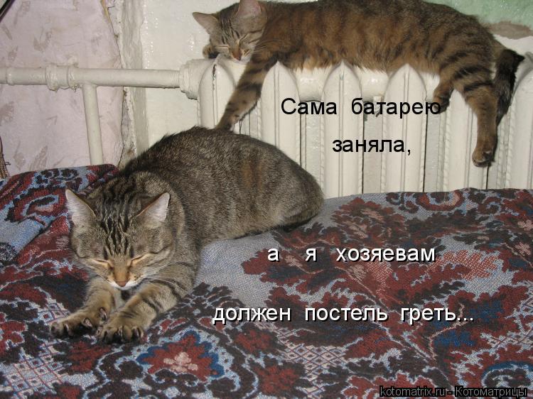 Котоматрица: а    я   хозяевам  должен  постель  греть... Сама  батарею   заняла,