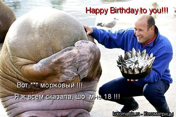 Котоматрица: Happy Birthday to you!!! Я ж всем сказала, шо  мне 18 !!! Вот *** моржовый !!!