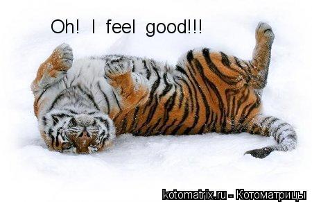 Котоматрица: Oh!  I  feel  good!!!