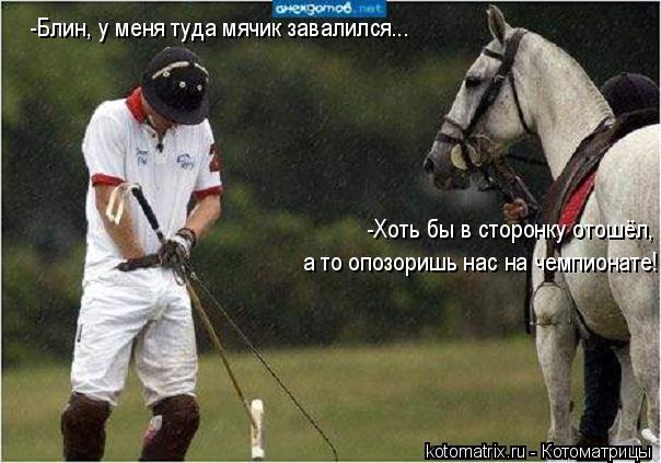 Котоматрица: -Блин, у меня туда мячик завалился... -Хоть бы в сторонку отошёл, а то опозоришь нас на чемпионате!