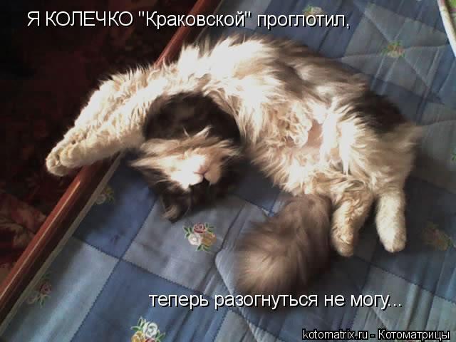 """Котоматрица: Я КОЛЕЧКО """"Краковской"""" проглотил,  теперь разогнуться не могу..."""