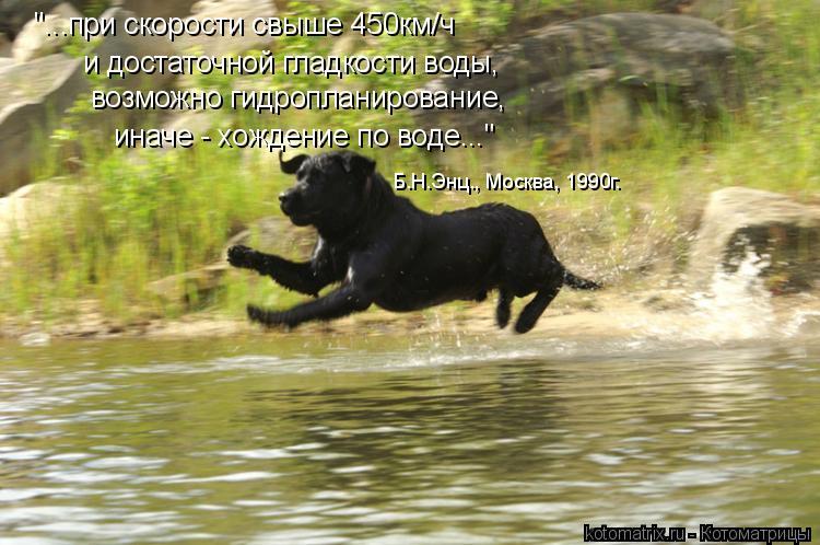 """Котоматрица: """"...при скорости свыше 450км/ч  и достаточной гладкости воды,  возможно гидропланирование,  иначе - хождение по воде..."""" Б.Н.Энц., Москва, 1990г."""