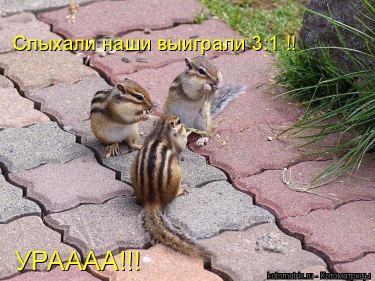 Котоматрица: Слыхали наши выиграли 3:1 !! УРАААА!!!