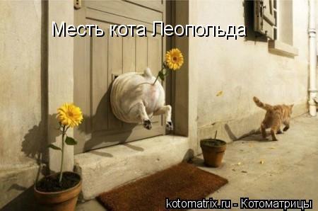 Котоматрица: Месть кота Леопольда