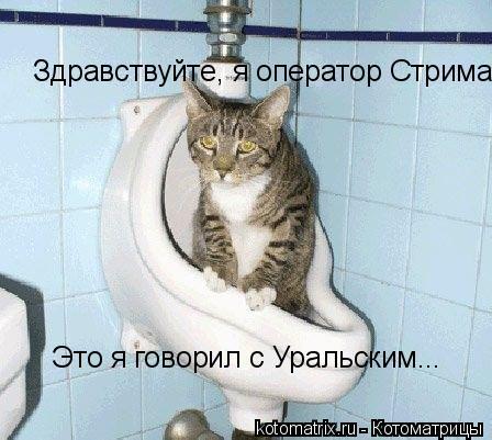 Котоматрица: Здравствуйте, я оператор Стрима.  Это я говорил с Уральским...