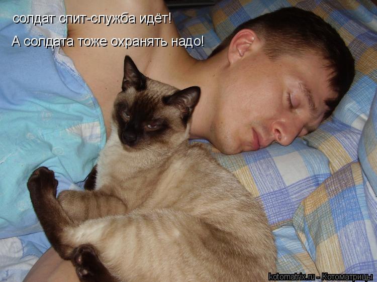 Котоматрица: солдат спит-служба идёт! А солдата тоже охранять надо!